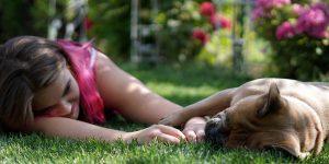1 de noviembre Día Mundial del Veganismo