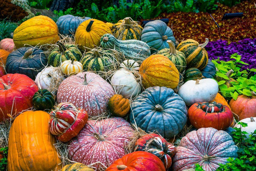 Verduras y calabaza contra la gripe