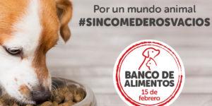 BANCO_DE_ALIMENTOS_FUNCACION_KIWOKO