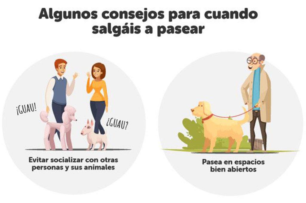 El bienestar de los animales01