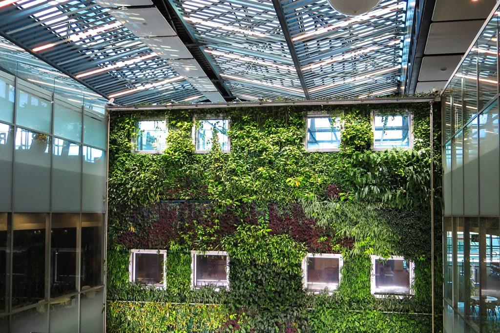 ¿Cómo elegir un jardín vertical?